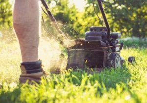 gardening services essex