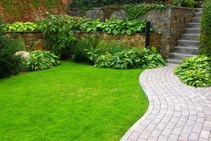 Gardening Services in South West London